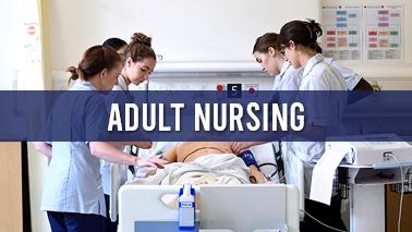 Peers Alley Media: Adult Nursing