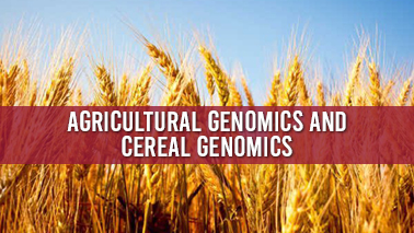 Peers Alley Media: Agricultural Genomics and Cereal Genomics