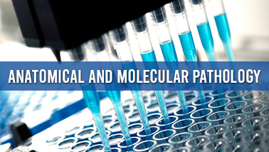 Peers Alley Media: Anatomical and Molecular pathology