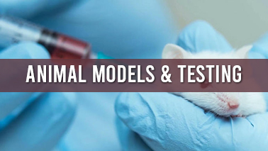 Peers Alley Media: Animal Models and Testing