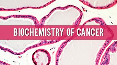 Peers Alley Media: Biochemistry of Cancer