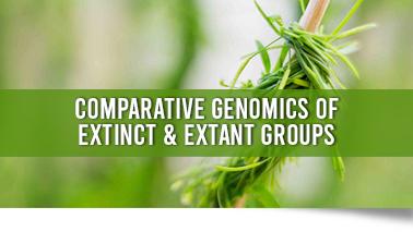 Peers Alley Media: Comparative Genomics of extinct  extant groups