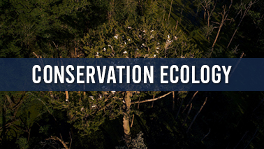 Peers Alley Media: Conservation Ecology