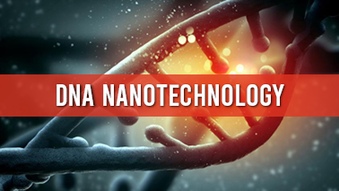 Peers Alley Media: DNA nanotechnology