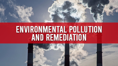 Peers Alley Media: Environmental Pollution and Remediation