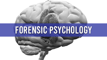 Peers Alley Media: Forensic Psychology