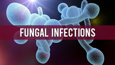 Peers Alley Media: Fungal Infections