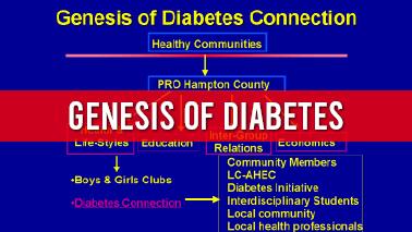 Peers Alley Media: Genesis of Diabetes