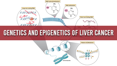 Peers Alley Media: Genetics and Epigenetics of Liver Cancer