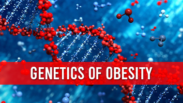 Peers Alley Media: Genetics of obesity