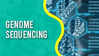 Peers Alley Media: Genome sequencing