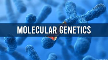 Peers Alley Media: Molecular Genetics