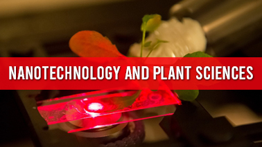 Peers Alley Media: Nanotechnology and Plant Sciences