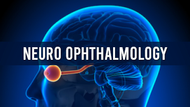 Peers Alley Media: Neuro Ophthalmology