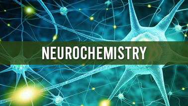 Peers Alley Media: Neurochemistry