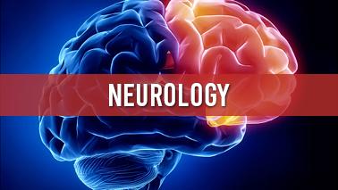 Peers Alley Media: Neurology