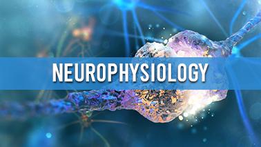 Peers Alley Media: Neurophysiology