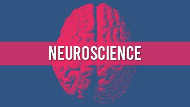 Peers Alley Media: Neuroscience