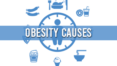 Peers Alley Media: Obesity Causes
