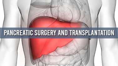 Peers Alley Media: Pancreatic Surgery and Transplantation