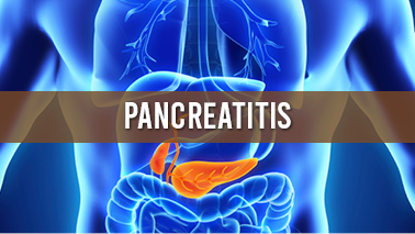 Peers Alley Media: Pancreatitis