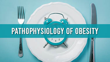 Peers Alley Media: Pathophysiology of Obesity