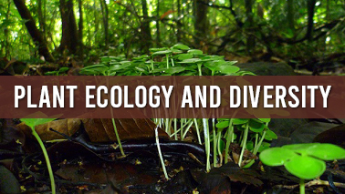 Peers Alley Media: Plant Ecology and Diversity