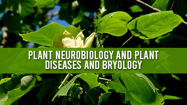 Peers Alley Media: Plant Neurobiology and Plant Diseases and Bryology