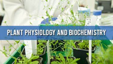Peers Alley Media: Plant Physiology and Biochemistry