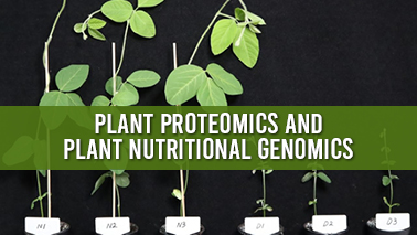 Peers Alley Media: Plant Proteomics and Plant Nutritional Genomics