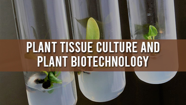 Peers Alley Media: Plant Tissue Culture and Plant Biotechnology
