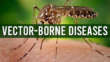 Peers Alley Media: Vector-borne Diseases