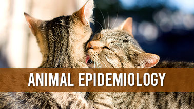 Peers Alley Media: Veterinary Epidemiology